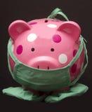 Др. банка piggy Стоковое Изображение RF