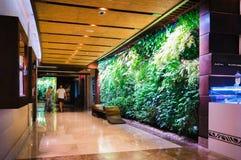 Дубай В лете 2016 Современный и яркий интерьер с стенами живущих заводов и мраморного украшения в гостинице Sofitel t Стоковое Изображение