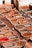 дубильни Марокко fes Стоковая Фотография RF