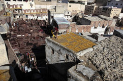 Дубильня Fez, Марокко Стоковое Изображение RF