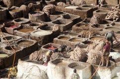 Дубильни Chouwara, Fes Марокко Стоковое Изображение
