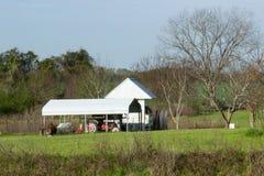Дублин, Georgia оле ферма Стоковое Изображение RF