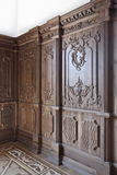 дуб обшивает панелями древесину Стоковые Изображения