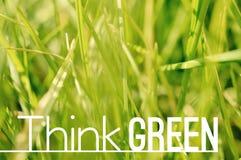 Думайте зеленый мотивационный плакат цитаты Стоковые Изображения RF