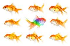 Думать индивидуальности Стоковое Изображение