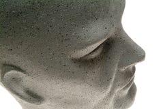 думмичная головка s стоковые фотографии rf