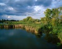 Дуна Стоковая Фотография RF