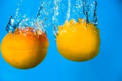 дурачок абрикоса Стоковое Изображение