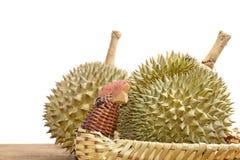 Дуриан в корзине Король плодоовощей Стоковое фото RF