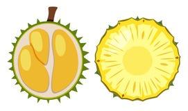 Дуриан и ананас отрезанные в половине Стоковое Изображение
