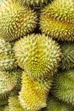 Дуриан, плодоовощ в рынке Таиланда Стоковые Изображения