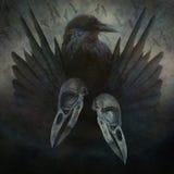 Дух вороны Стоковое Фото