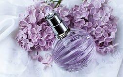 Дух и фиолетовые цветки Стоковое Изображение RF