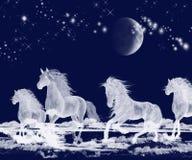 дух серебра океана луны лошадей иллюстрация вектора