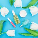 Дух, сливк, губная помада и белые тюльпаны цветут на голубой предпосылке Блог красоты Плоское положение, взгляд сверху Стоковые Изображения