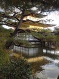 Дух Японии Стоковое фото RF