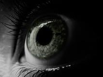 душа к окну Стоковое Изображение