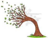 Дуя дерево ветреного дня ветра иллюстрация штока