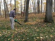 дуя листья падения Стоковые Фотографии RF