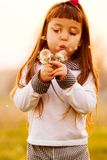 дуя одуванчики ребенка Стоковое фото RF