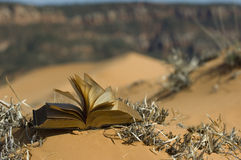 дуя песок страниц дюн розовый Стоковые Изображения