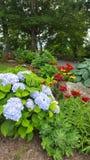 Дуя сады утеса Стоковая Фотография RF