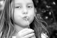 дуя семена девушки одуванчика Стоковые Фото