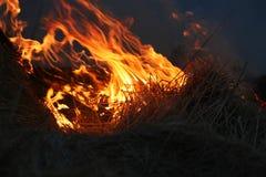 дым вверх стоковые изображения