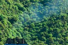 дым загрязнения лесного газа принципиальной схемы климата стоковое изображение rf