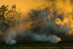 Дым полей в осени Стоковое фото RF