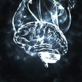 дым людей мозга Стоковая Фотография