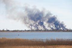 Дым от крупного пожара Стоковое Изображение RF
