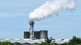 Дым от промышленного, загрязнение окружающей среды видеоматериал