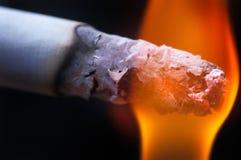 дым сигарет Стоковая Фотография RF