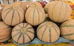 Дыни органических веществ канталупы продали на местном рынке города Провансаль стоковая фотография