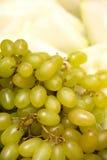 дыня виноградин зеленая Стоковые Фото