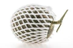 Дыня или канталупа Стоковое фото RF