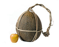 дыня яблока Стоковая Фотография