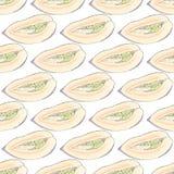 Дыня Pepino fruits pattern seamless рука нарисованная предпосылкой также вектор иллюстрации притяжки corel Иллюстрация штока
