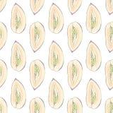 Дыня Pepino fruits pattern seamless рука нарисованная предпосылкой также вектор иллюстрации притяжки corel Бесплатная Иллюстрация
