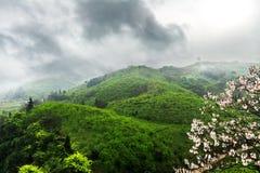 Дыхание весны Стоковые Фотографии RF