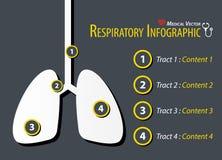 Дыхательное Infographic Плоский дизайн бесплатная иллюстрация
