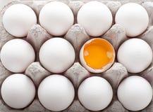 Дюжина из яичек в коробке показывая желток стоковая фотография rf