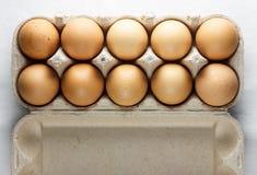 Дюжина стрельб коричневых яичек верхних Стоковые Изображения
