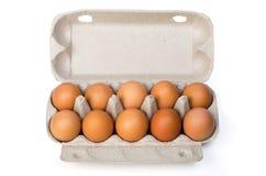 Дюжина яичек цыпленка в контейнере картона Стоковые Фотографии RF