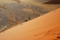 Дюна 45 взбираясь. Sossusvlei, Намибия Стоковые Фотографии RF