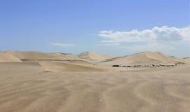 Дюна в пустыне namib Африке стоковое изображение rf