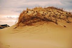 Дюна в Provincetown Стоковые Изображения RF