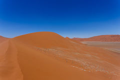 Дюна 45 в sossusvlei Намибии Стоковые Изображения