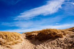 дюна Дании стоковое фото